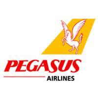 pegasus_ref